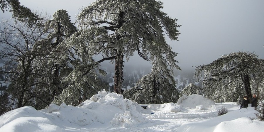 snow-cyprus